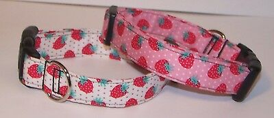 Dog Collar Berry (Wet Nose Designs Berry Patch Strawberry Dog Collar Strawberries Pink or Cream )