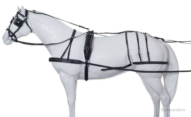 Horse Show Leather Driving Harness - Silver Spots - Horse Size