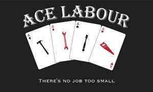 Ace Labour Perth Perth City Area Preview