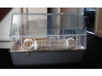 Hamster. Cage