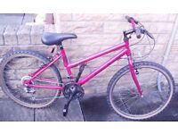 GIRLS/SMALL LADIES MOUNTAIN BIKE A Girls/Small Ladies Mountain Bike in Excellent condition