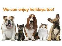 Pet Care Services - Pet Sitter - Doggy Day Care and Home Boarding