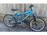 "20"" Children's Ridgeback bike"