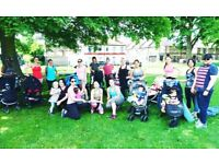 Free buggy Bootcamp
