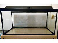 85L aquarium and cabinet for sale