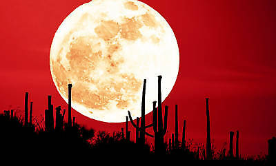 CANVAS PICTURE MOON RED SKY LARGE MOUNTED WALL ART A1+