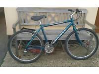 Dawes Adult bike