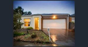 3 bed room house available for lease transfer in Truganina. Truganina Melton Area Preview