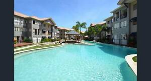 First week rent paid! Idalia Townsville City Preview