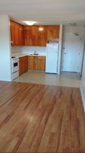 Spacious 1 Bdrm - Heat and HW Included - Pet Friendly