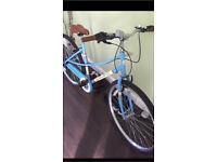 Ladies 700c hybrid Cathy bike
