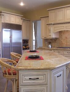 A complete 10'x10' L-shape kitchen with all wood and granite top
