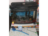 Fish tank full set-up