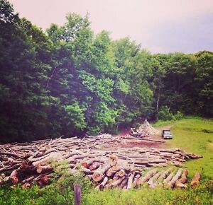 DRY FIREWOOD MIXED HARDWOOD