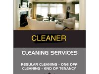 Cleaner and Carer