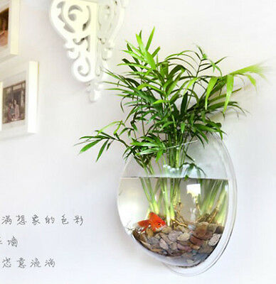 Plant wall hanging mount bubble aquarium bowl fish tank - Pot de decoration exterieur ...