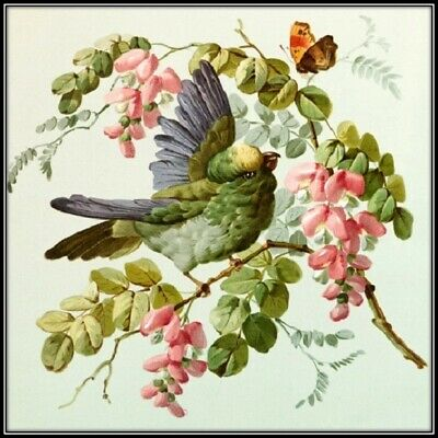 30 Custom Vintage Fancy Bird Art Personalized Address Labels