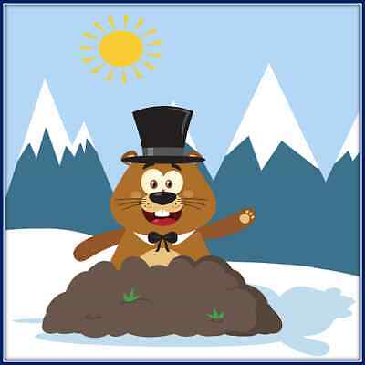 30 Custom Winter Groundhog Personalized Address Labels