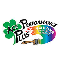 Ace Performance Plus