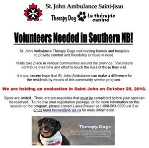 Therapy Dogs Volunteers Needed