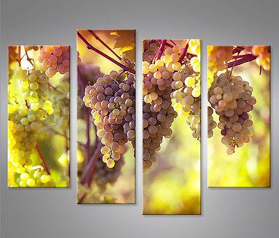 Bild auf Leinwand Weintrauben Reben Wein Weinberg 4er Leinwandbild Wandbild ()