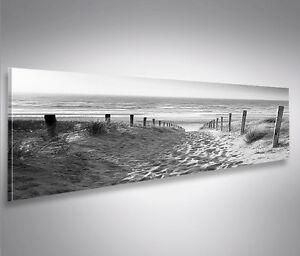Weg zum Meer Schwarz Weiss Panorama Format Bild auf Leinwand Wandbilder