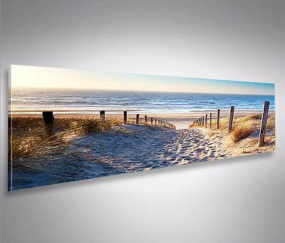 Weg zum Meer Nordsee Strand Panorama Format Bild auf Leinwand Wandbild Poster