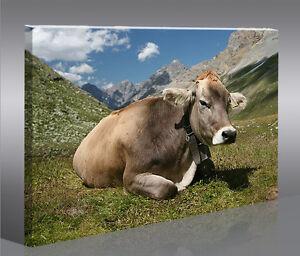 Kühe V3 1p Bild Kuh Landschaft Tier auf Leinwand Wandbild Poster