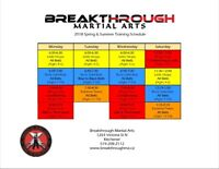 Martial Arts Lessons (Ages 4 to Adult)