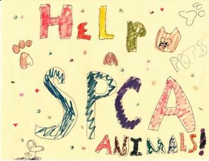 Collecting donations for SPCA!