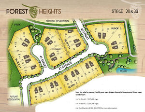 premium lots for sale in Beaumont Forest Heights