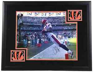 "Chad ""ochocinco""  signed framed picture"