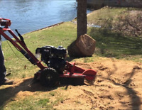 Stump Grinding Free Quotes