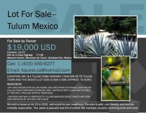 Build your dream home in Tulum Mexico-  inexpensively with help