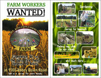WANTED: Farm Worker Volunteers, Vegetables, Hay, Grain, Animals