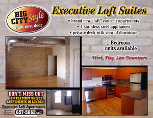 LIVE IN THE HEART OF DOWNTOWN, BEAUTIFUL APT FOR RENT JAN 2016 London Ontario image 1