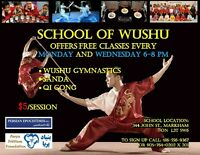 FREE WUSHU SCHOOL for YOUTH 12-25 years old