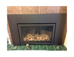 Fireplace insert ~ Archard 31-DVIE33C