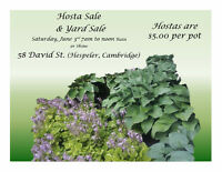 Hosta & Yard Sale