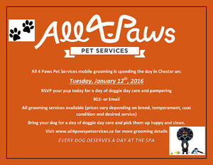 All4Paws comes to Chester Feb.10