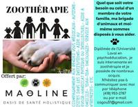 Service de zootherapie à domicile
