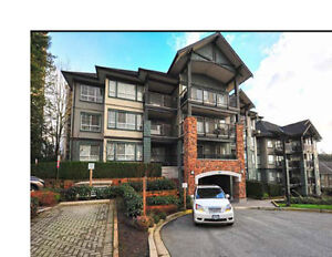 2Bed2Bath Condo4Rent LougheedSkytrain Great Amenities