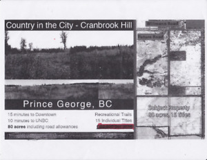 Subdivided Parcel of Land for sale on Cranbrook Hill