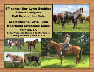 6th Annual Bar-Lynn Stables Fall Production Sale