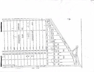 Raw Land for Sale - Kawartha Lakes Area - Building Lot