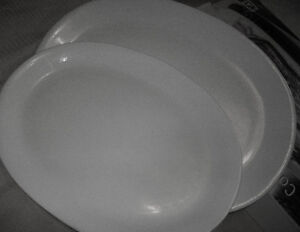 Company's Coming two glazed serving platters - excellent quality Cambridge Kitchener Area image 4