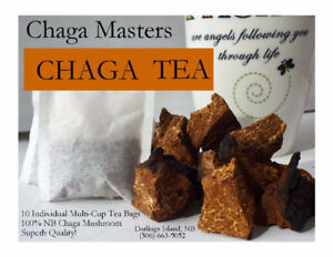 Chaga Tea - Tea Bags - Cinnamon or Regular Flavor