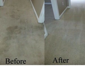 CARPETS & UPHOLSTERY CLEANING **905-967-2406**