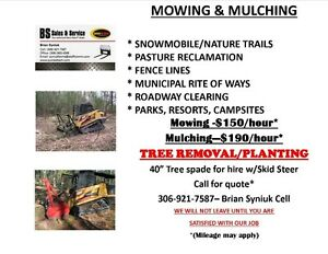 Mowing/Mulching/Tree Moving Services