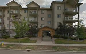 203, 3425 19 ST - Immaculate 2Bed, 2Bath CONDO!